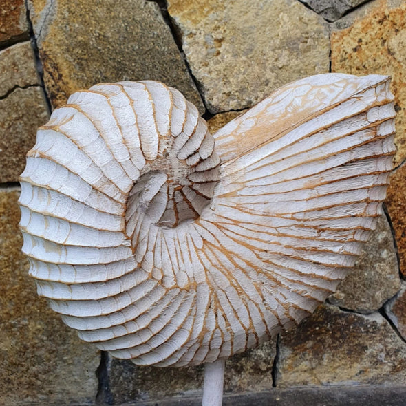 Antique Carved Wooden Sea Shell Decor - Canggu & Co