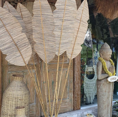 Exotic Tall Banana Leaf Fronds - Canggu & Co