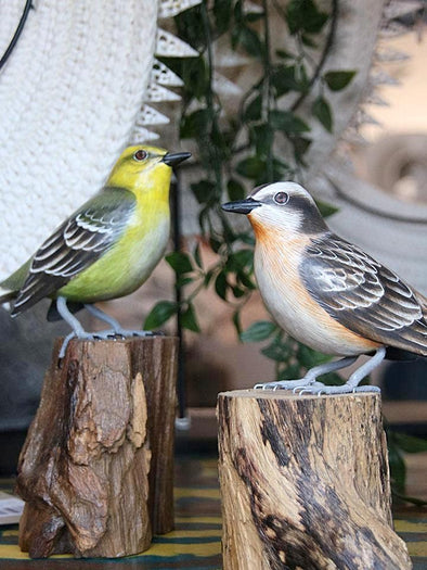 Gold & White Breasted Finches - Canggu & Co