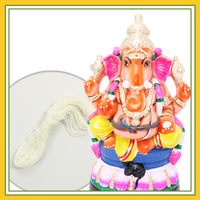 Eco Friendly (Seed Ganesha) - Combo Pack 5 (Contains 2 Items: Eco Friendly Idol 8 Inch Colour Clay - 1 & Poonal -1)