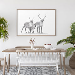 Caribous Family illustration