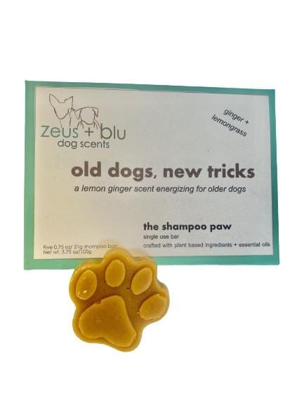 old dogs, new tricks - energizing ginger + lemongrass - 5 pack