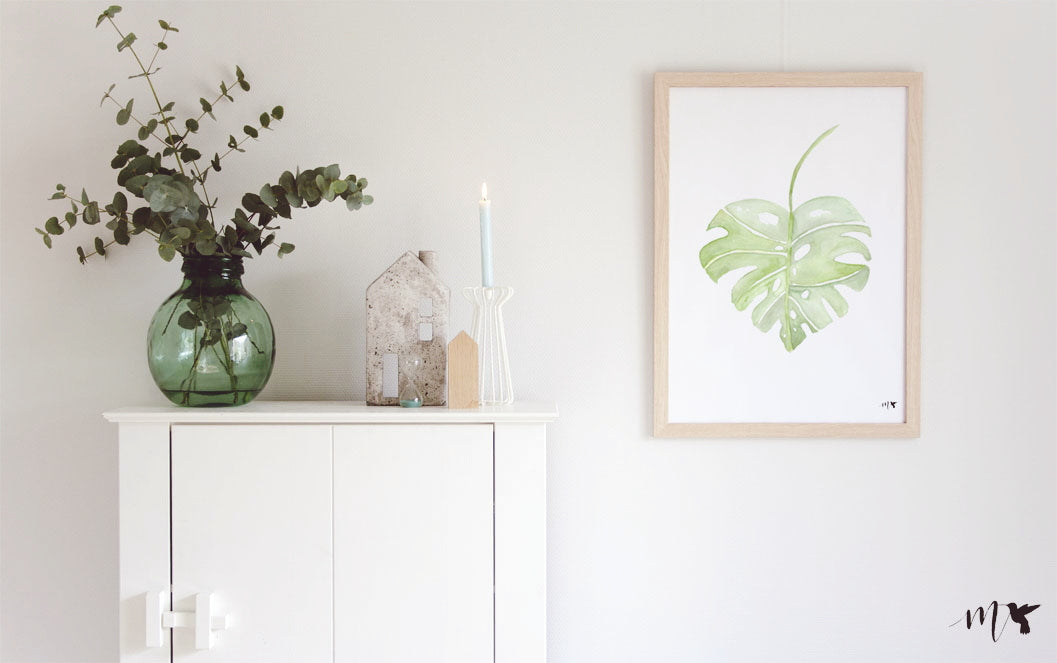 NATUUR | MONSTERA