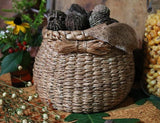Fine Old Woven Round Basket with Black Walnuts