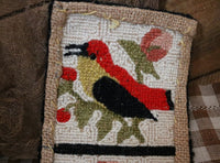 Old American History Book and Hooked Rug Depicting Birds