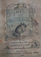 Life and Wanderings of A Mouse Book Cover and Mouse Pen Wipe Cute!