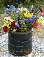 Primitive Staved Bucket Black Paint with Gourds Fabulouse for Halloween
