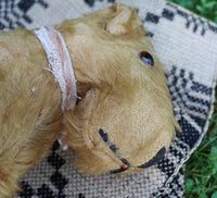 Quick Witted Old Mohair Stuffed Terrier