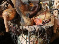 Old Farm Wire Basket Filled With Autumn Pleasantries