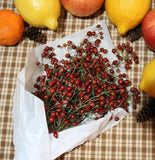 Fresh Rosehip Bunch Perfect for the Holidays