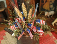 Antique Watering Can and Bowl Patriotic Flavor Cute