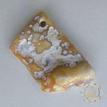 Tampa Bay Agatized Coral Amulet #4