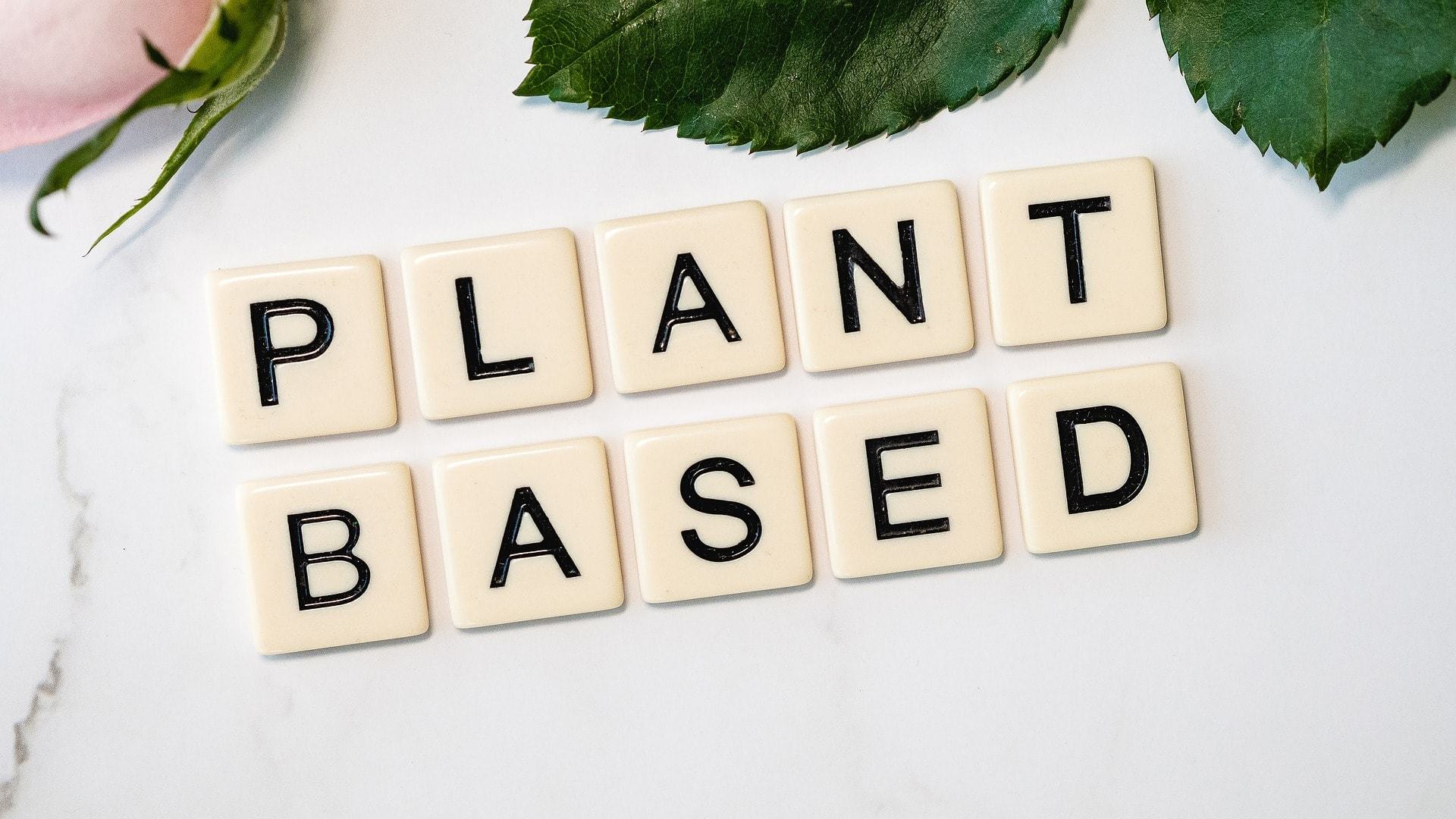 About Plant-based Diet