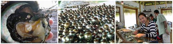 Tahiti black pearls