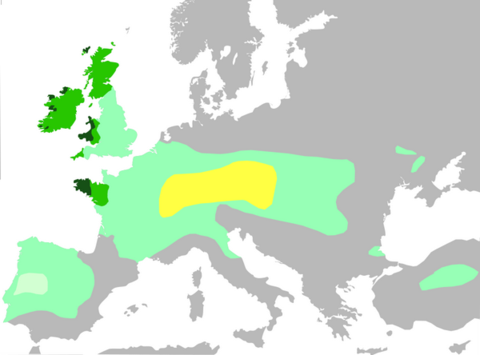european map of celts in history