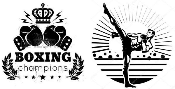 kickboxing championship ring design