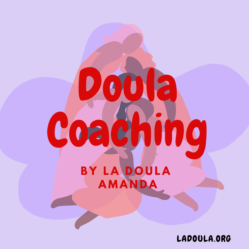 DOULA COACHING PROGRAM