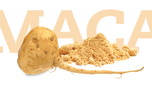 Top 5 Health Benefits of Maca