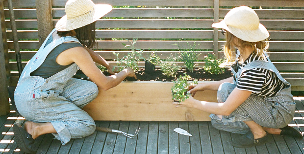 3 Small Space Gardening Tips for City Dwellers