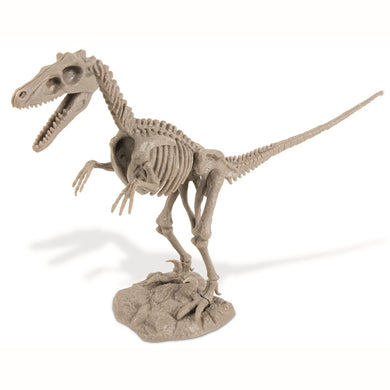 Dino Excavation Kit Velociraptor