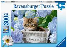 Little Kitten Palapeli 300XXL Ravensburger