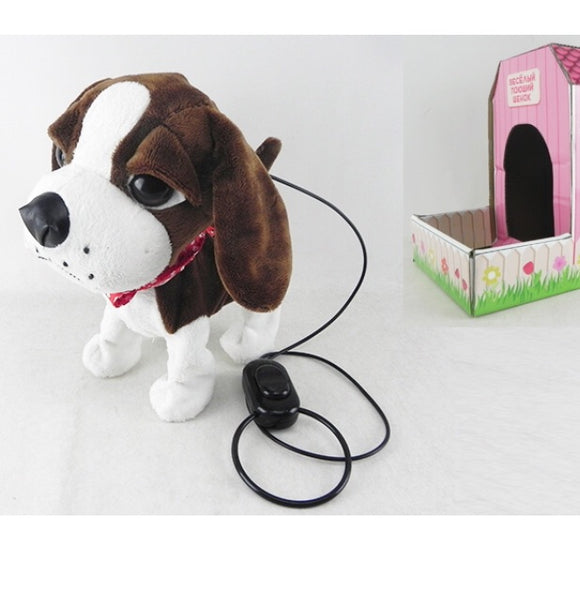 Music Pet Tanssiva hauva
