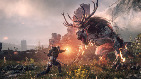 The Witcher as mentioned by AJ Forrisi in is article 'My Gaming Experience' for Soesic Gaming