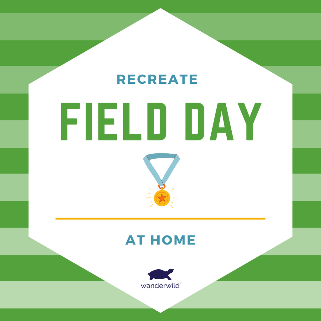 Recreate Field Day At Home
