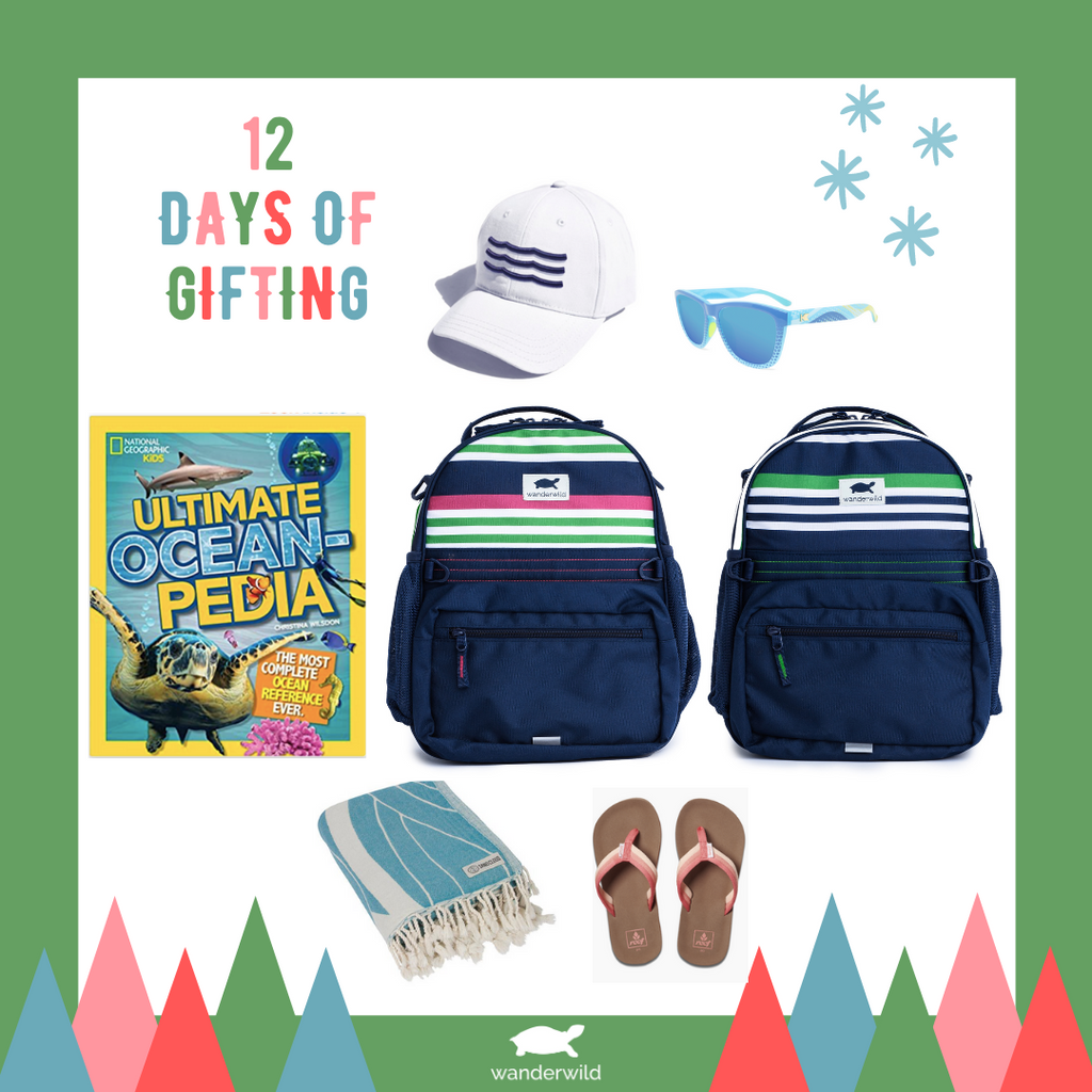 12 Days of Gifting: Green & Raspberry Stripes