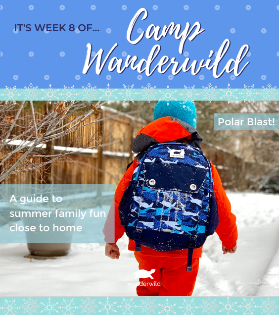 Camp Wanderwild - Week 8