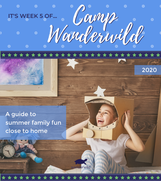 Camp Wanderwild - Week 5