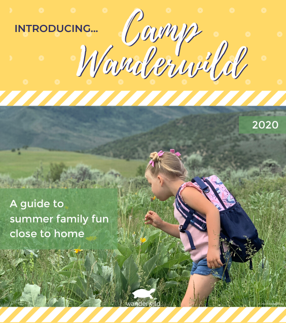 Camp Wanderwild - Week 1
