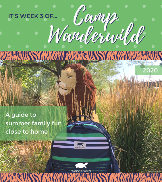 Camp Wanderwild - Week 3