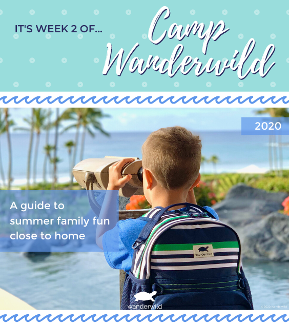Camp Wanderwild - Week 2