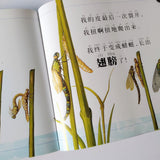 虫虫想想看 National Geographic Insect Series - with hanyu pinyin and bilingual (Set of 6)