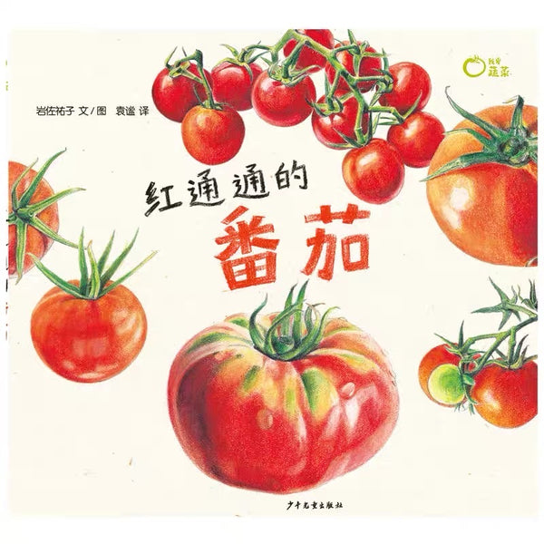 我爱蔬菜系列 I Love Vegetables - Tomato, Cabbage, Brinjal, Potato (Set of 4)