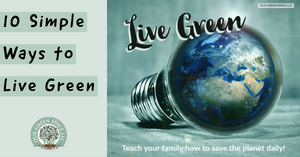 "Read the blog and find 20% coupon code for ""Live Green"" products."