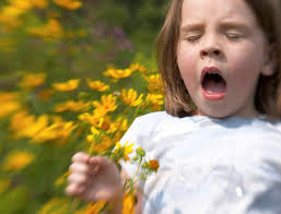 Signs of Pollen Allergies in children and their Remedies