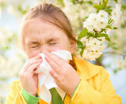 10 Facts One Must Know About Grass and Tree Pollen Allergy Symptoms