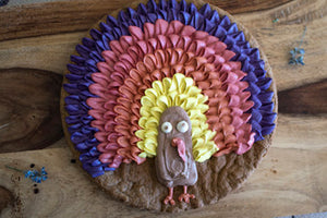 COLOURFUL TURKEY CAKE