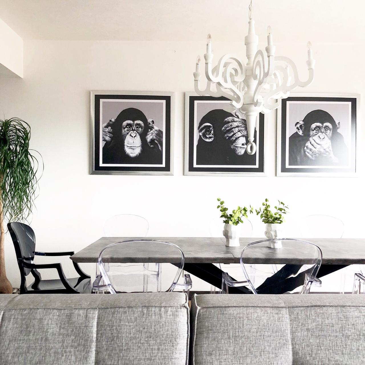 Chimps Set  De 3 Cuadros Decorativos