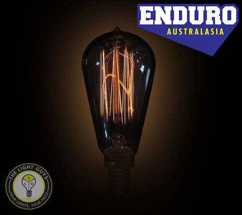 ENDURO ST38 25w SES Carbon Filament Squirrel Cage - TheLightGuys