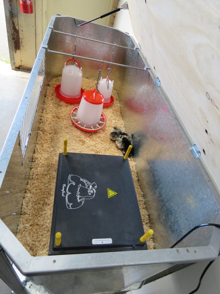 Brooder box for baby chickens