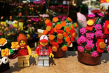 The Flower Market CNY Camp 1 Day (4.5-7 years, Kowloon / Hong Kong) - Whizpa