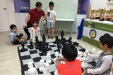 The Chess Academy 4 Classes (Beginners / Intermediate, Kennedy Town) - Whizpa