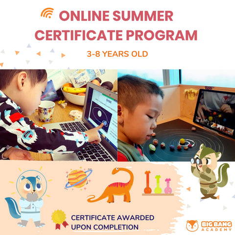 Online Science Summer Camp (Junior class for 6-8 years, Online)