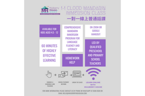 Live 1-1 Online Mandarin Immersion Class (4.5-12 years, Online)