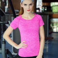Women's Short Sleeve Anti-Wrinkle Quick Dry Active Top