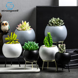 Strongwell Succulents Planter Flower Pots