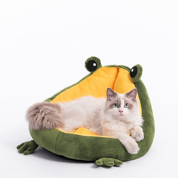 Frog For Cats House Warm Small Dog Mat